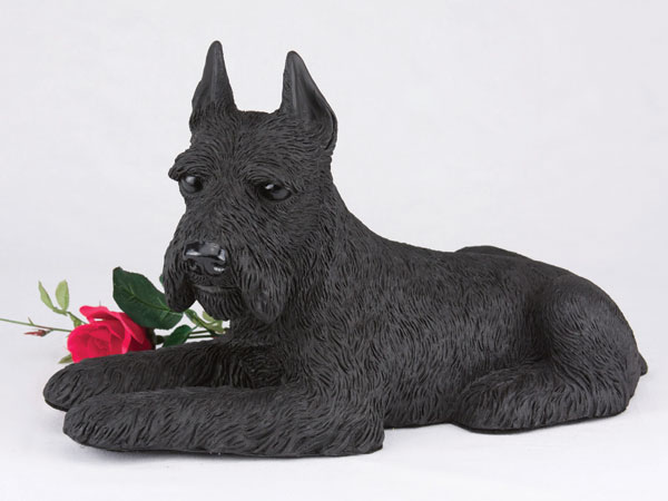 Black schnauzer urn with ears up