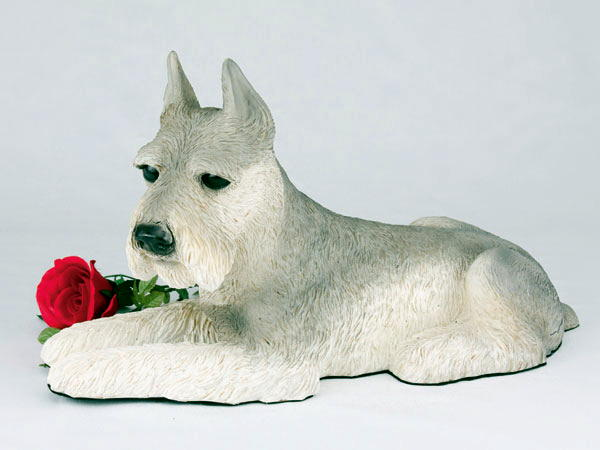 Gray schnauzer urn with ears up