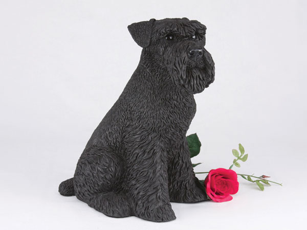 Black schnauzer urn with ears down