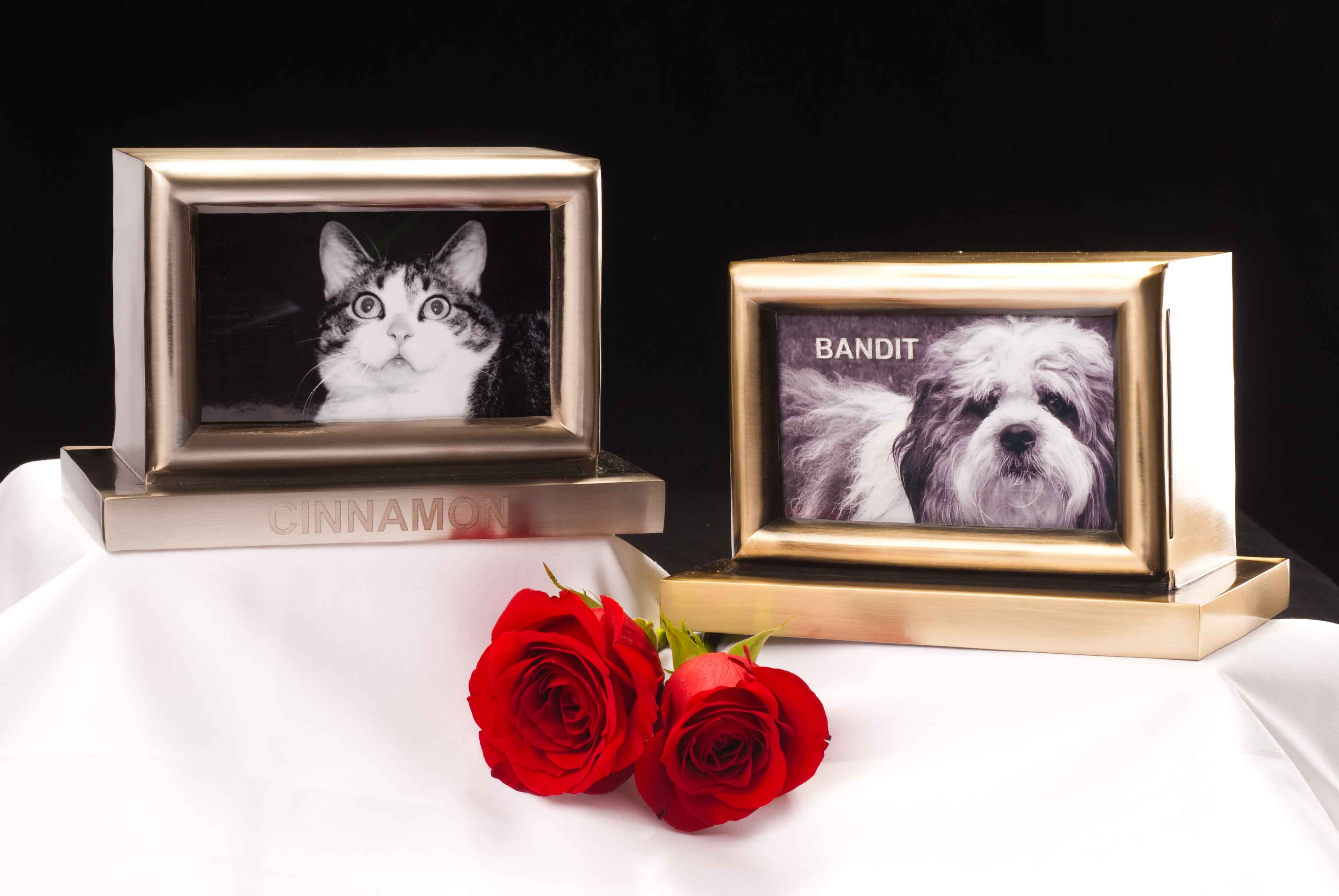 Antique brass and brushed nickel Picture frame pet urns
