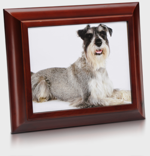 Picture frame with urn for pet
