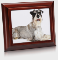 pet picture frame and urn