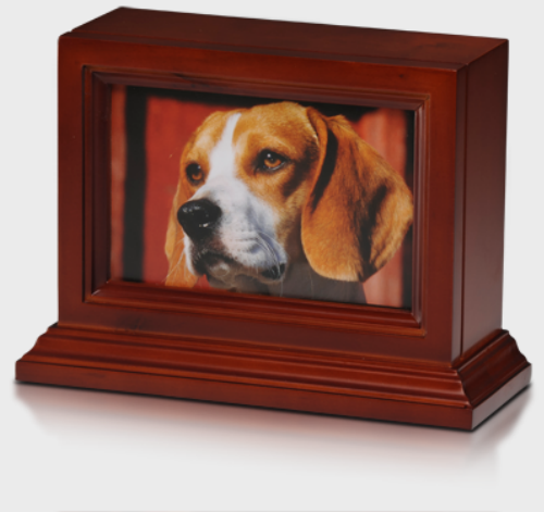 Wood urn for pet with place for picture